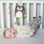 taf_toys_prince_the_penguin_baby_soother-c