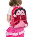 sidekick backpack ladybug-12