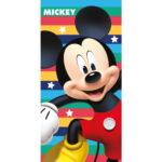 Dim-Towel-Disney-MickeyMouse-Cool-19TW166