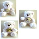 New-Αρκουδάκι λούτρινο ΑΕΚ 30cm Malelis-4